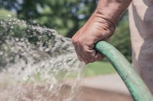 garden-hose-413684_640