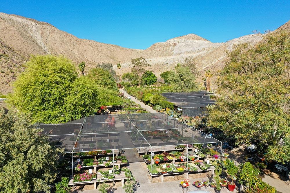Palm Desert Nursery And Garden Center